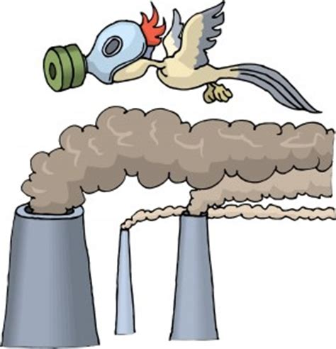 Custom My Sisters Graduation Day essay writing